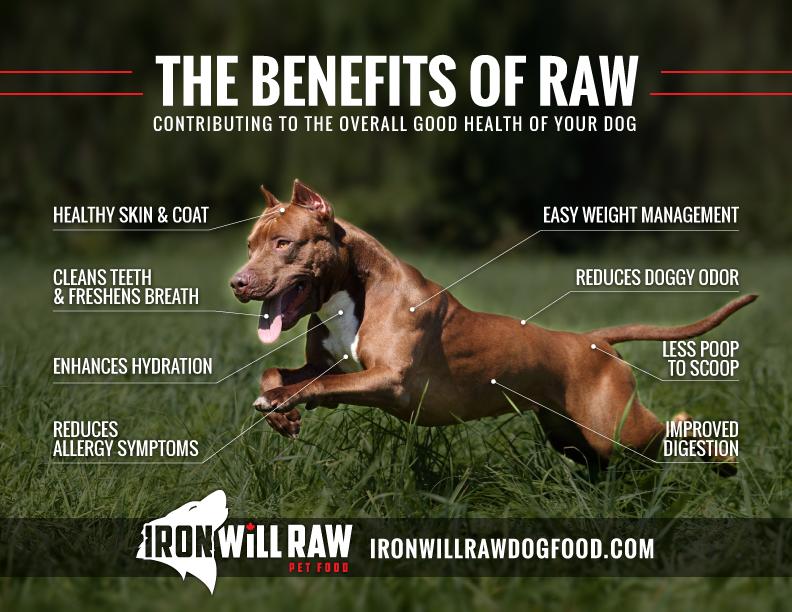 IronWill-BenefitsOfRaw